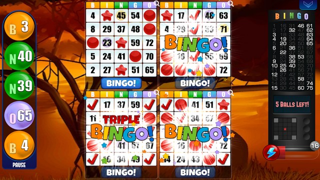 Bingo par Absolute Games